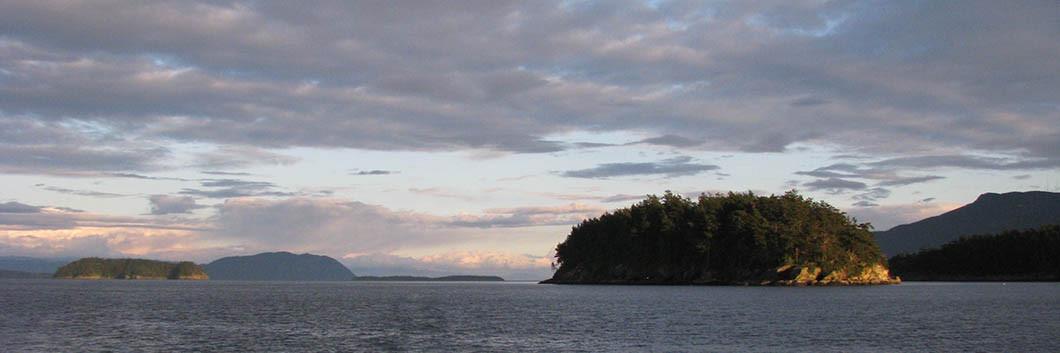 islands-web